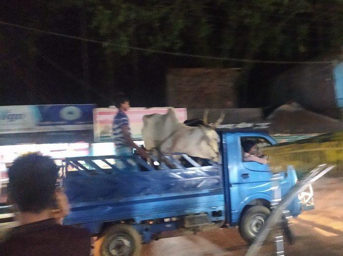 জৈন্তাপুর সীমান্তে থেমে নেই চোরাকারবার, প্রশাসন নিরব
