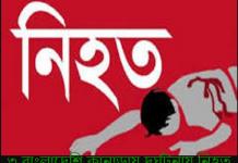 ৩ প্রবাসী বাংলাদেশি কানাডায় সড়ক দূর্ঘটনায় নিহত